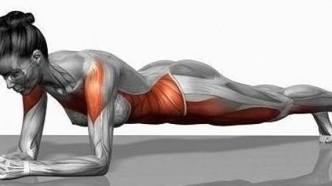 Hur man gör plankan