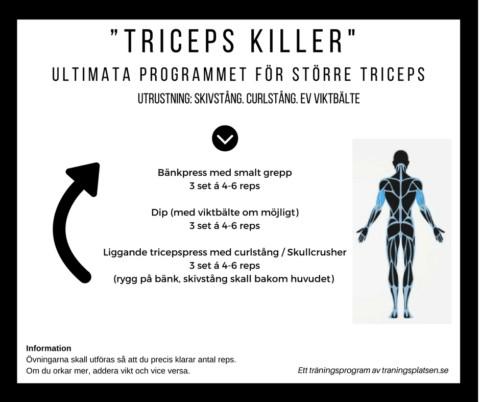 Träningsprogram triceps