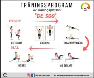 träningsprogram de 500