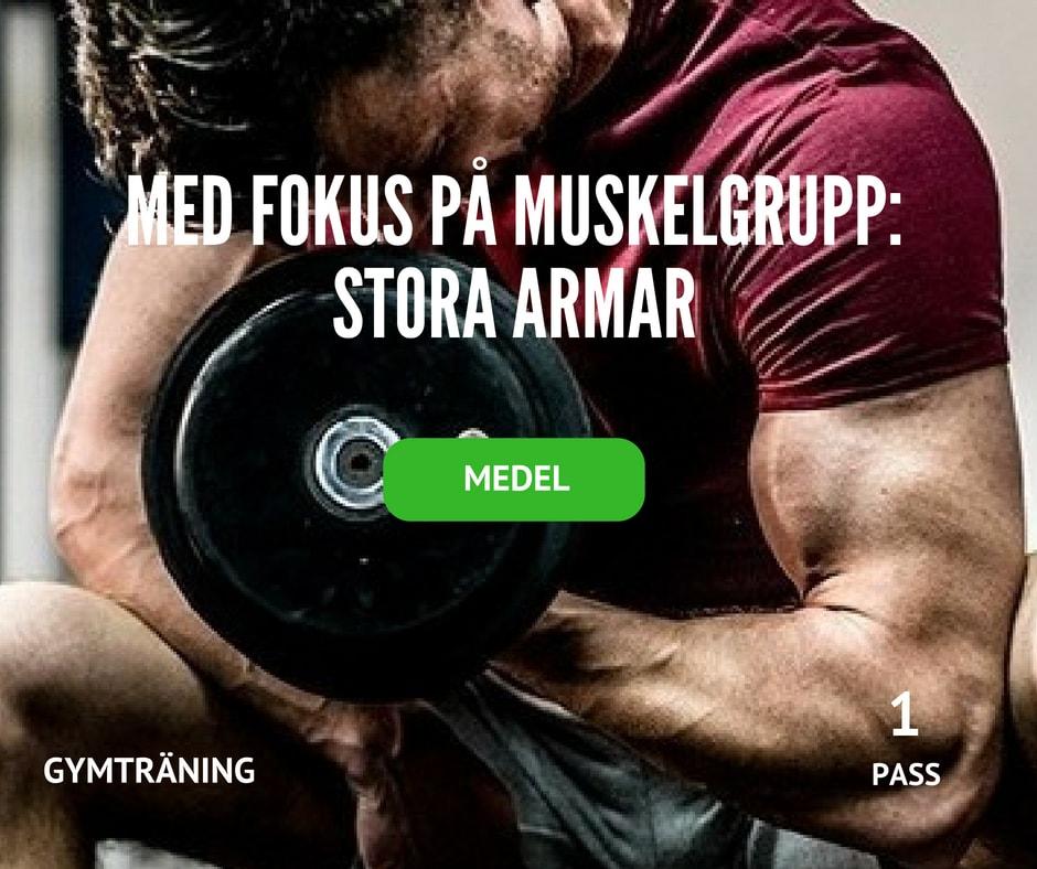 träningsprogram stora armar, bicepsträning, tricepsträning, biceps, triceps, armträning, snygga armar, armmuskler