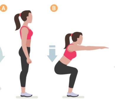 Squats träning