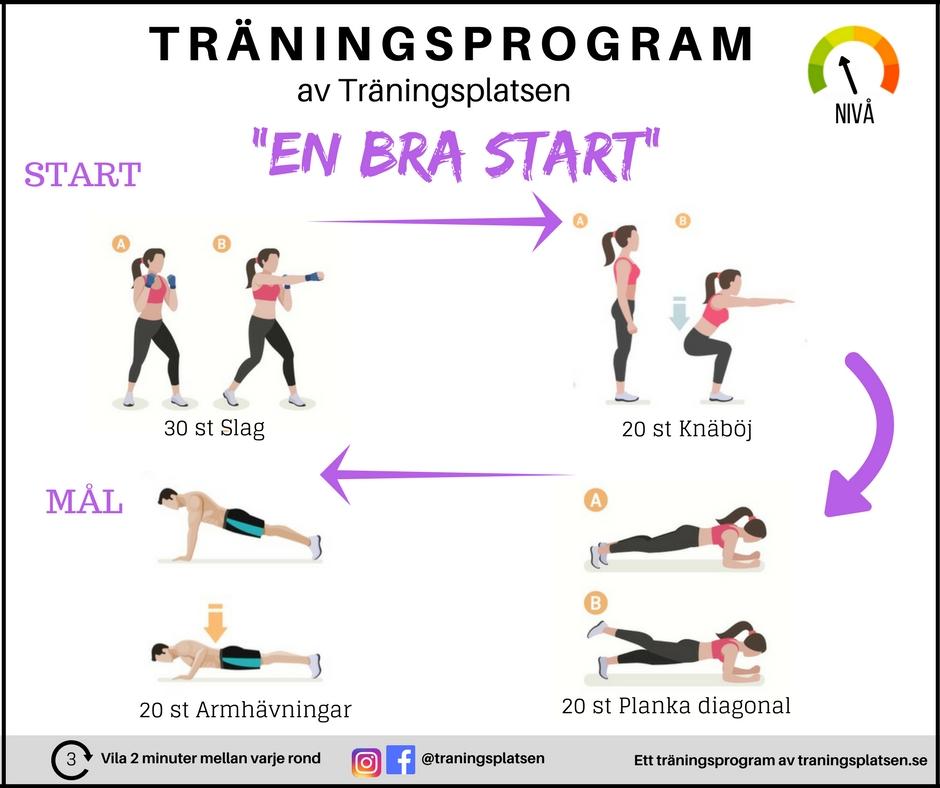 träningsprogram gravid hemma