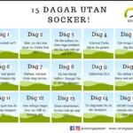 15 dagar utan socker