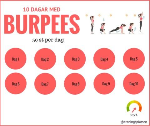 10 dagar med burpees