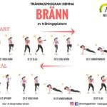 träningsprogram hemma kondition, hemmaträning