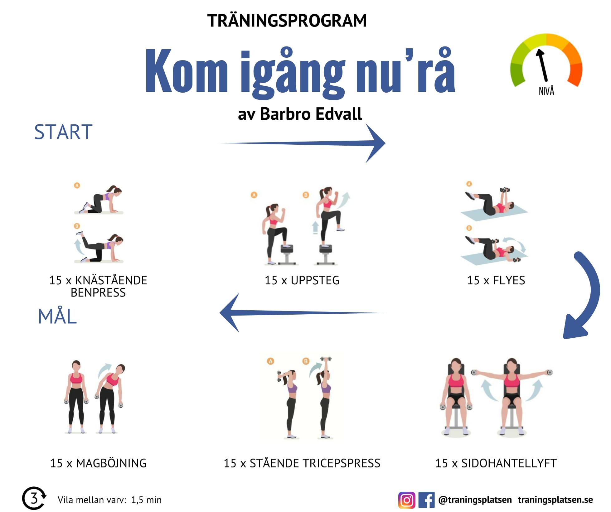 träning viktnedgång schema