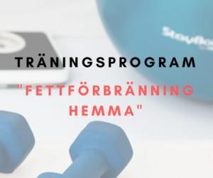 Träningsprogram fettförbränning hemma, gå ner i vikt, fettförbränning