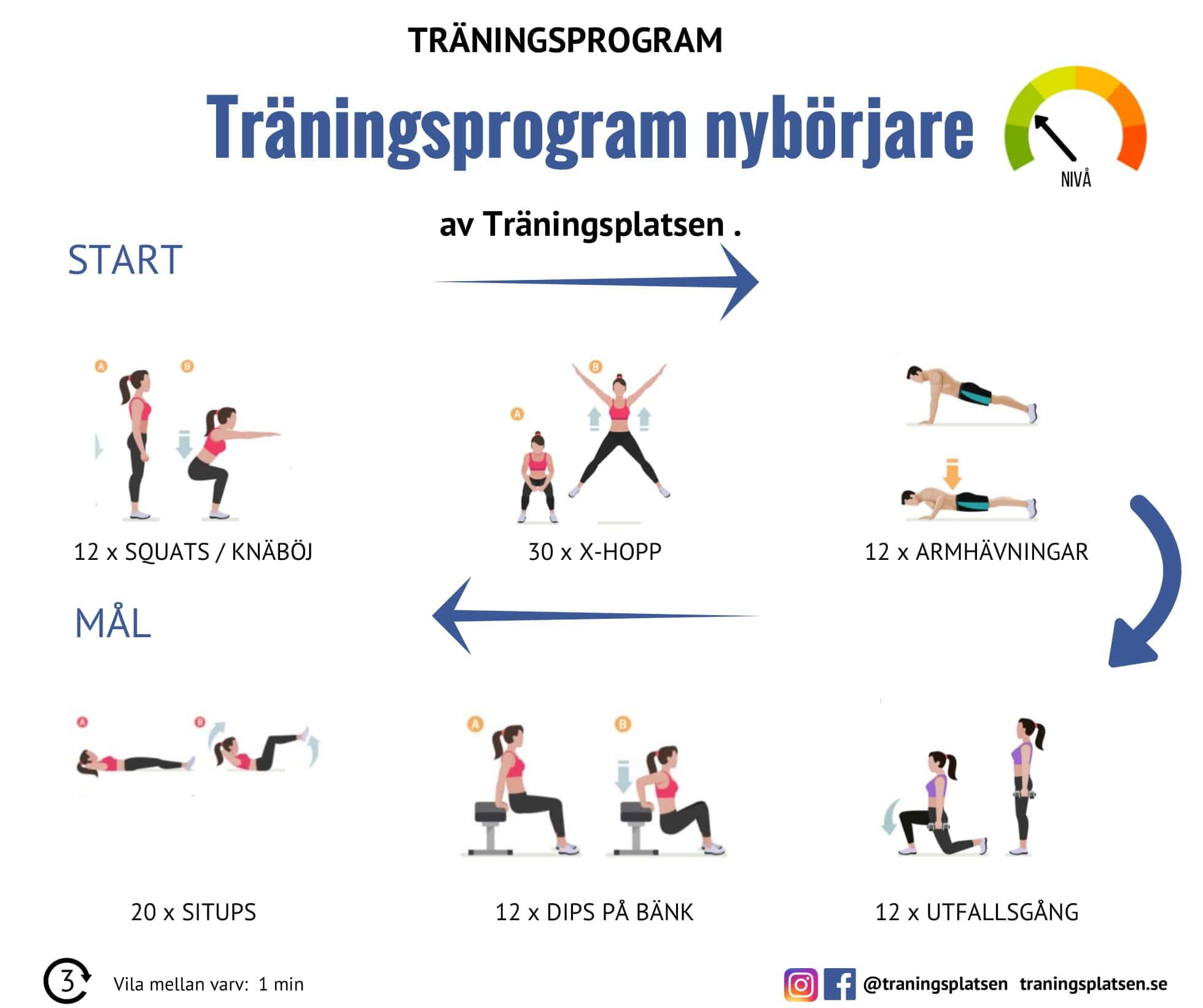 kost och träningsprogram gratis