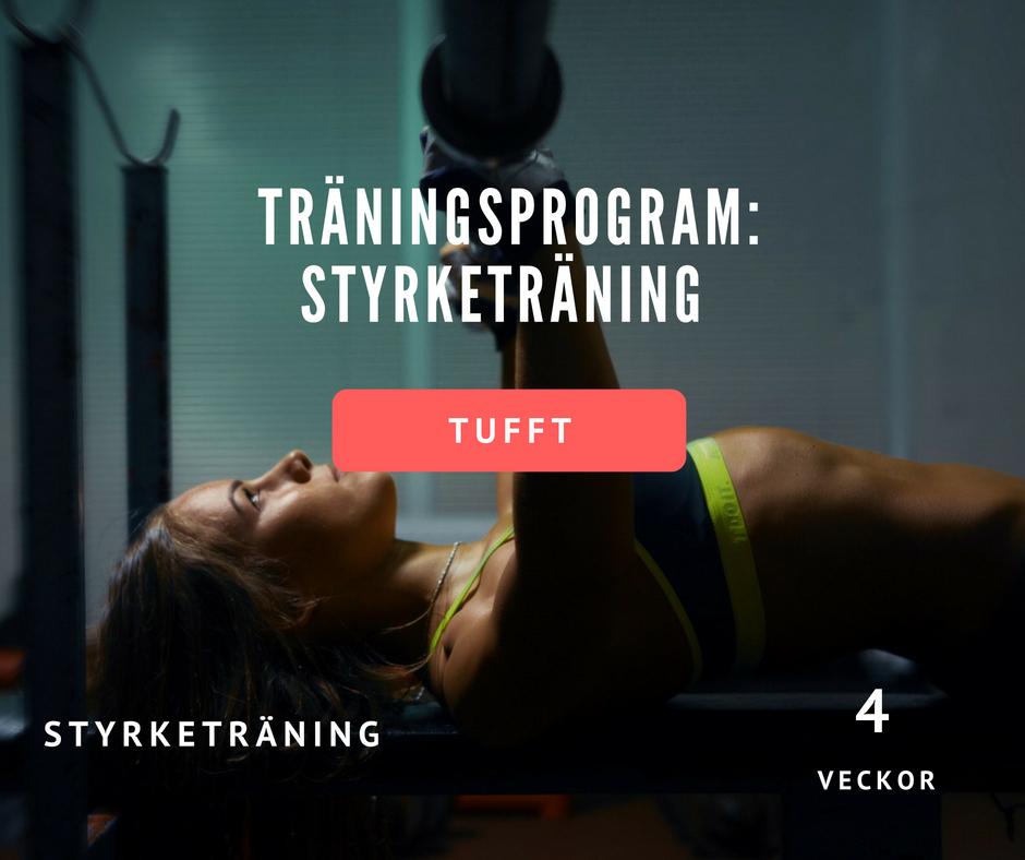 träningsprogram styrketräning