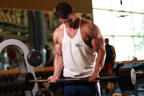 De bästa bicepsövningarna