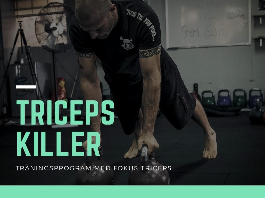 träningsprogram triceps, träningsrutin armar, träningsprogram armar