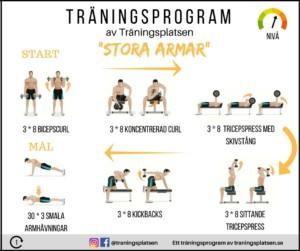 träningsprogram stora armar
