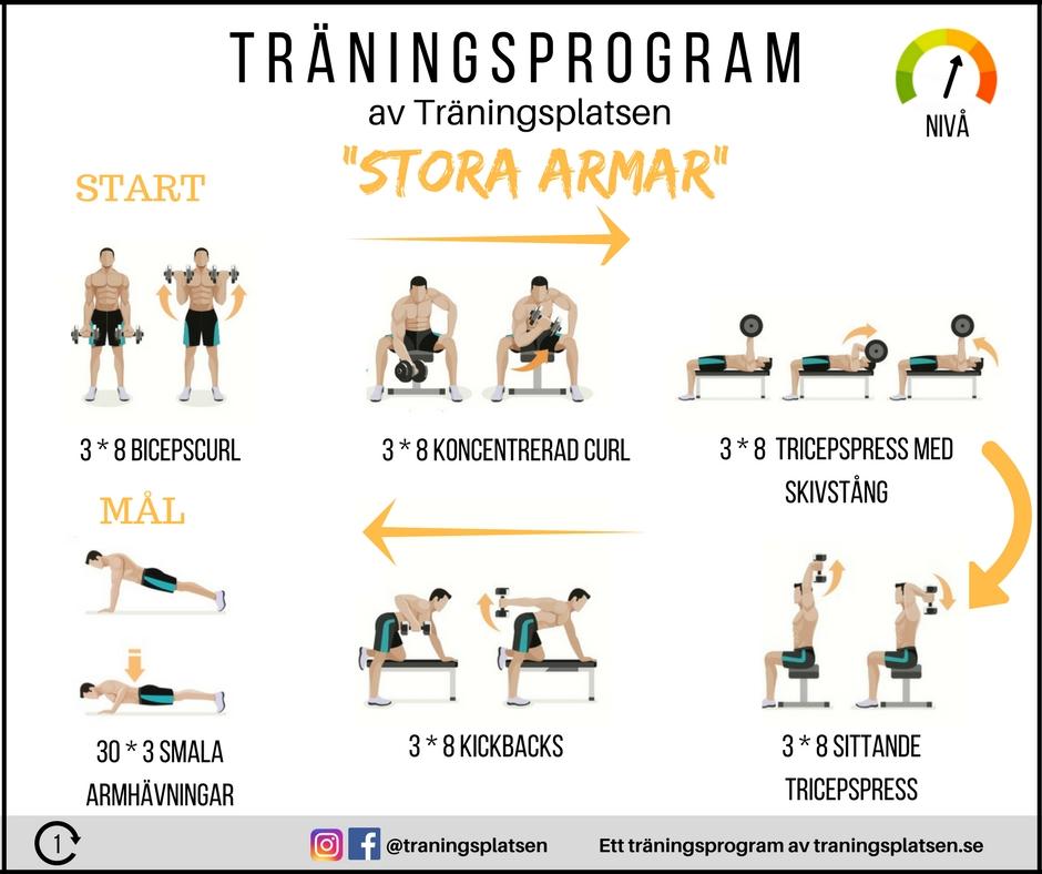 träning för armar