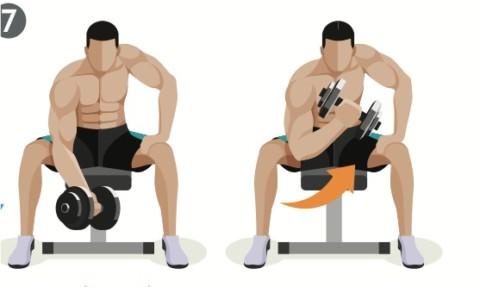 Koncentrerad bicepscurl