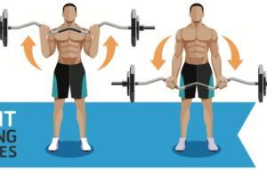 skivstångscurl, biceps, armar, muskler