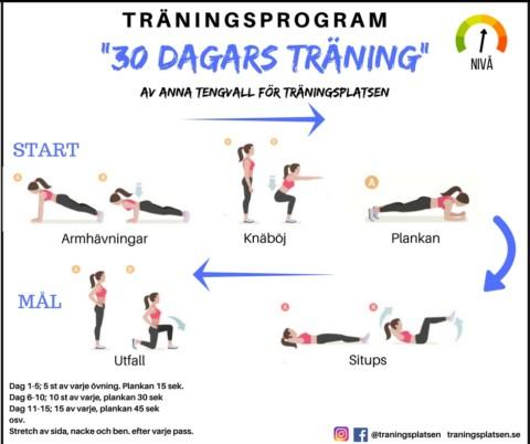 30 dagars träningsprogram – av Anna Tengwall