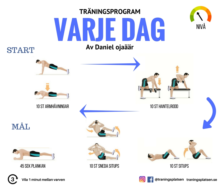 träningsprogram varje dag, träningsrutin, ryggmuskler, armmuskler