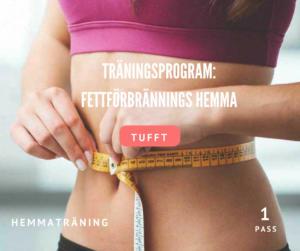träningsprogram fettförbränning hemma, bränn fett, gå ner i vikt, fettförbränning